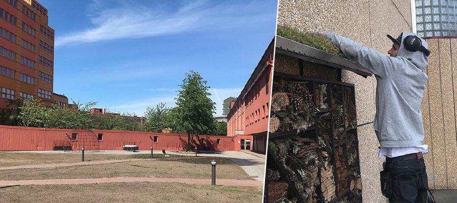 Insektshotell sätts upp vid Plåtgården på Lindholmen.