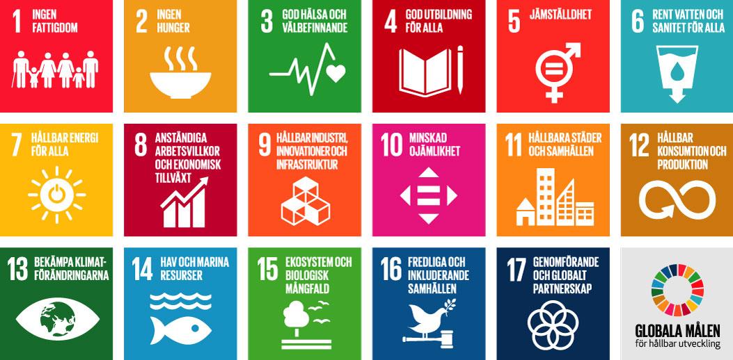 Karta som visar de globala målen.