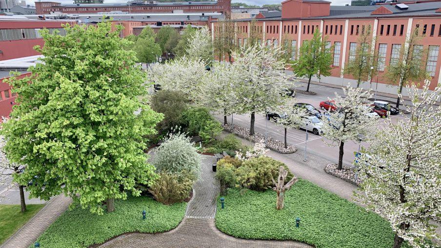 Bilden visar en gräsplätt med träd och buskar.